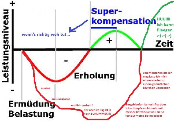 Das Modell der Gigakompensation nach Weidler